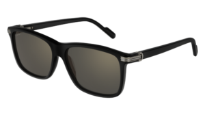 Cartier Sunglasses - CT0160S - 001