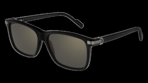 Cartier Sunglasses - CT0160S - 001