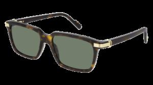 Cartier Sunglasses - CT0220S - 002