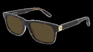 Mont Blanc Sunglasses - MB0163S - 002